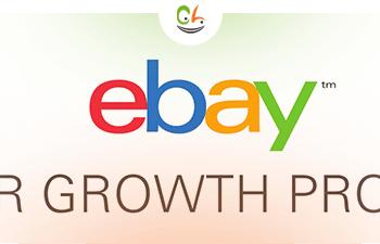 Amazing eBay Success Stories: From Zero to $250K in 3 months